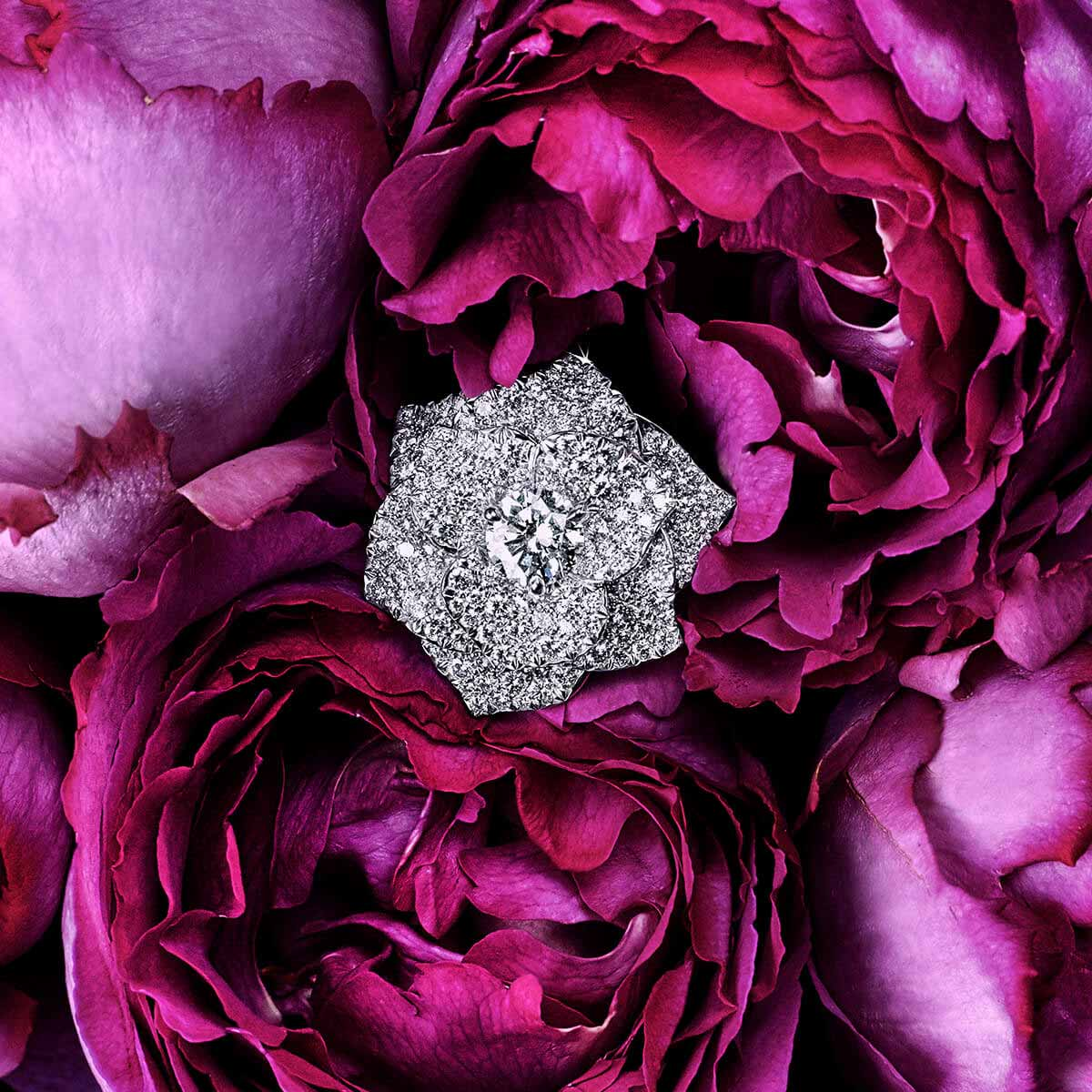 Piaget Rose jewelry